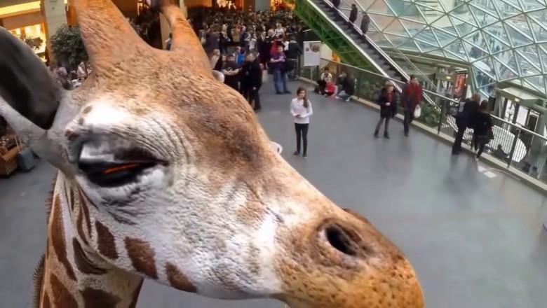В Японии открылся первый голографический зоопарк.